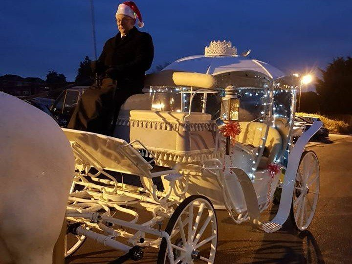 Prom Horse and Carriage Hire Essex and London